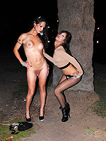 Ts street prostitutes Hot Nikki gets naked on the street. Nicole Montero.